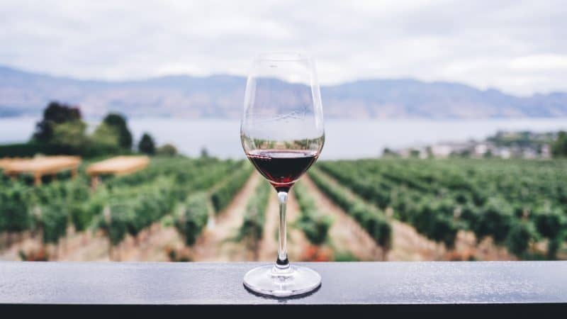 The 20 Best Kentucky Wineries To Visit