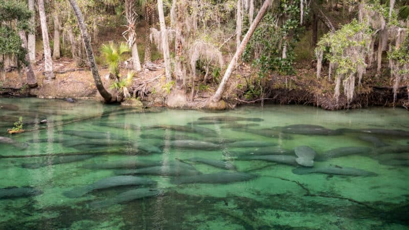 15 Day Trips From Orlando For Adventure Seekers