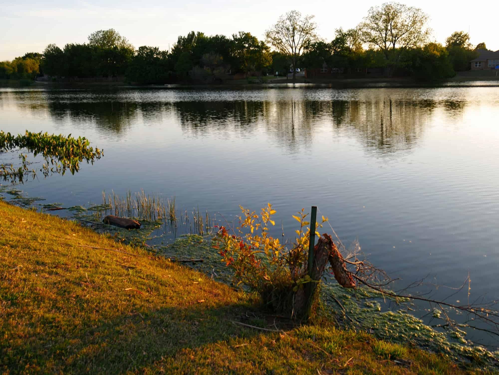 Eufaula Lake