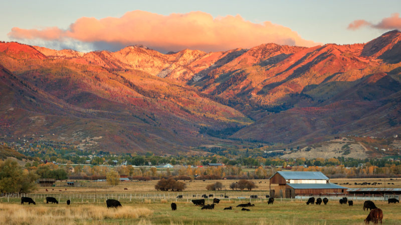 12 Day Trips From Salt Lake City: Experience The Beauty