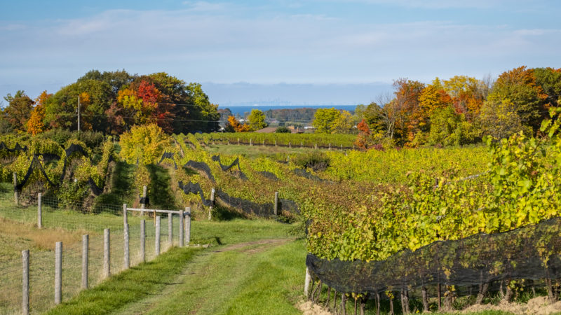 10 Day Trips From Rochester, New York