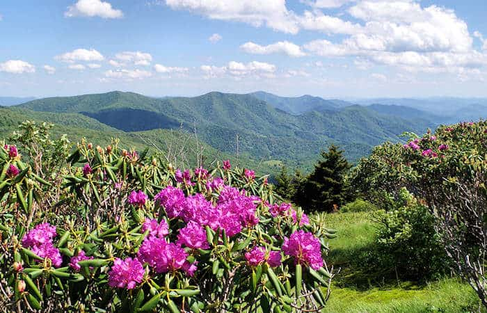 9 Day Trips From Roanoke, Virginia: Mountainous Views