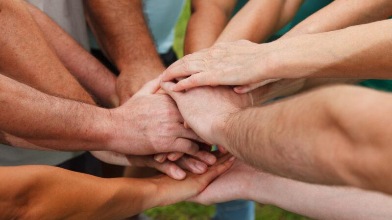 25 Best Volunteer Abroad Programs